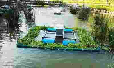 我国印发首个涉水攻坚战实施方案 治理黑臭水体