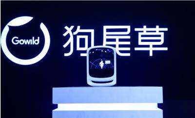 智能硬件研发商Gowild获1.5亿元A+轮融资,聚焦AI虚拟生命产品