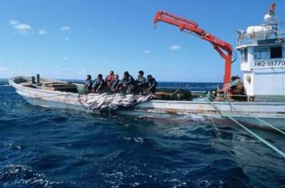 中水渔业斥资4.2亿与实控人及旗下组建新公司