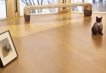 家居实木地板的保养方法