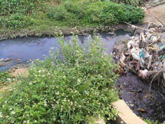深圳水体黑臭被中央环保督察盯上 投1000亿治污力争年底完成90%
