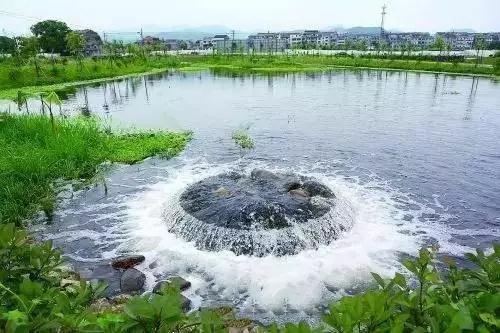 """""""BOT系列净水活素——水体生态修复技术""""问世,让臭水起死回生"""
