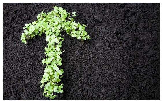 安徽省发布污水处理厂污泥高干脱水炭化处置技术导则