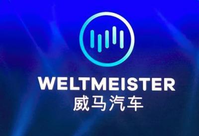 威马汽车旗下新敏雅动力电池项目开工,总投资166亿