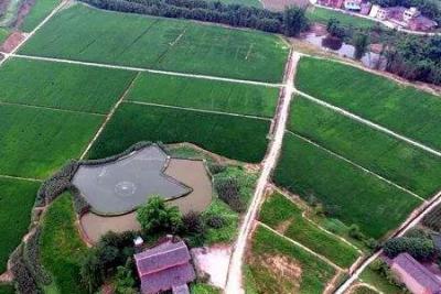 重庆将融资2亿用于10万亩以上土地宜机化整治建设