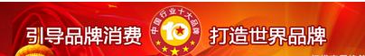 2018年度中国粉条十大品牌总评榜发布