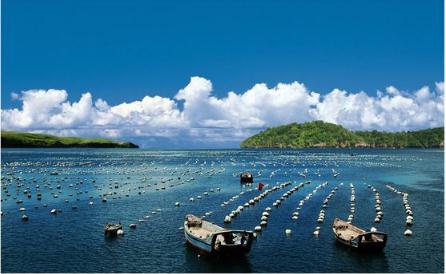 《海洋环境保护法》修订进展:六方面加强海洋生态环境保护