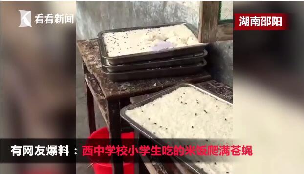 小学米饭爬满苍蝇!湖南洞口县花园镇西中学校米饭上爬满苍蝇