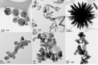 高工吴萍分析评价国内外精细陶瓷粉体的物理与化学特性差异