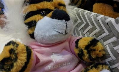 云服务提供商Tigera完成3000万美元B轮融资,确保企业上云安全