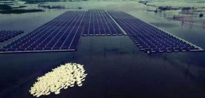法国漂浮光伏专业公司Ciel&Terre欲携手Principia公司开发极端环境漂浮光伏平台系统