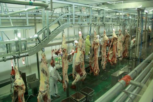 正规屠宰场如何杀牛?哪里有杀牛屠宰场