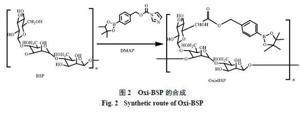 活性氧响应的白及多糖载药胶束制备及其表征