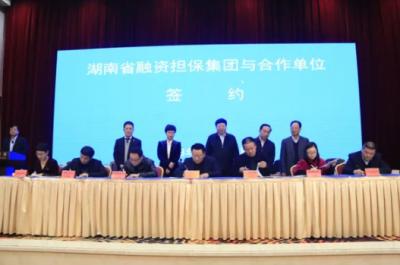 星邦重工与湖南省融资担保集团签署战略合作协议