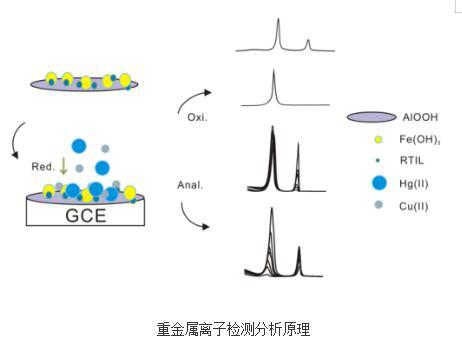 重金属离子检测分析原理与研究进展