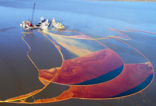 生态环境部:海洋生态环境整体形势依然严峻