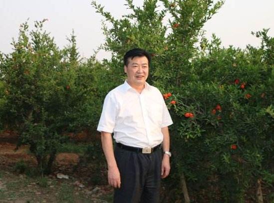 盛运环保总经理王仕民辞职专任高级顾问 2017年薪29万元