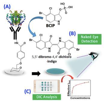 ?Kuldeep Mahato和Pranjal Chandra开发出裸眼ALP检测免疫生物传感器