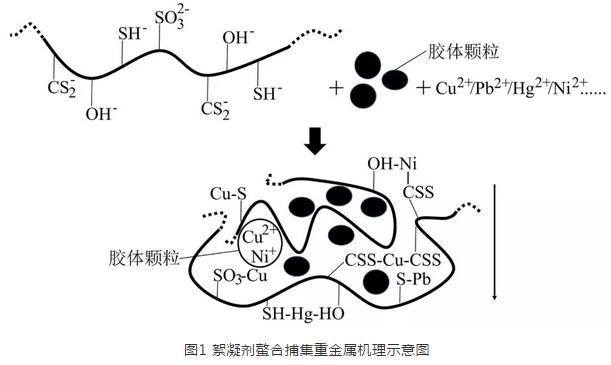 应用于重金属去除的絮凝剂种类与机理