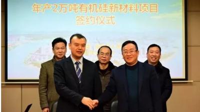 年产2万吨有机硅新材料项目落户衡东