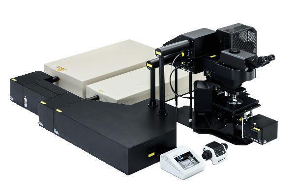 新型三光子显微镜让神经科学家更深入了解脑细胞
