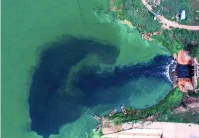 环渤海到底有多少排污口?在哪里排?谁在排?排什么?排多少?