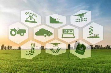 """神州信息:聚焦""""金融科技""""战略业务,推进""""智慧农业""""""""智能服务""""两大主营业务"""
