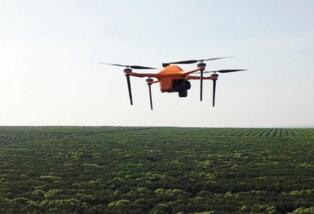 创业公司SeeTree将使用无人机把大数据带到农业领域