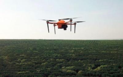 创企SeeTree借助AI和传感器 让无人机采集农田大数据