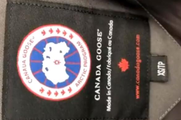 """加拿大鹅""""罗生门""""初有眉目, 网易考拉的回复有疑点, 记者深挖!"""