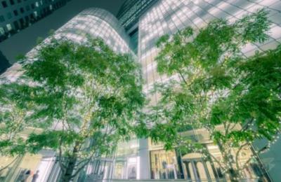 重庆万州三雄极光大力发展绿色照明产业