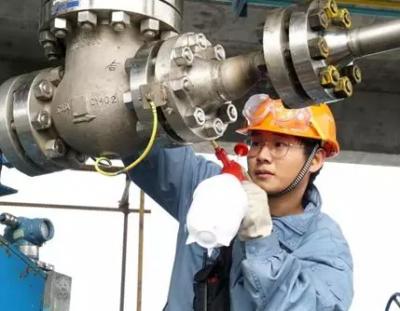 镇海炼化国内首套国产化煤焦制氢装置开车成功!