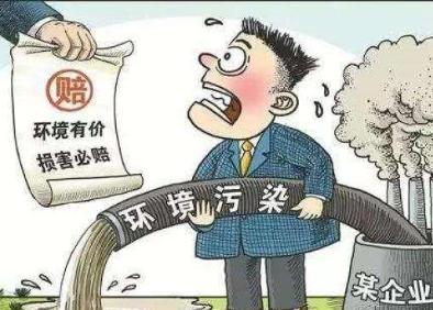 浙江省首例生态环境损害协议赔偿案司法裁定有效