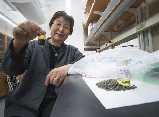 普渡大学科学家将塑料垃圾变成燃料来源
