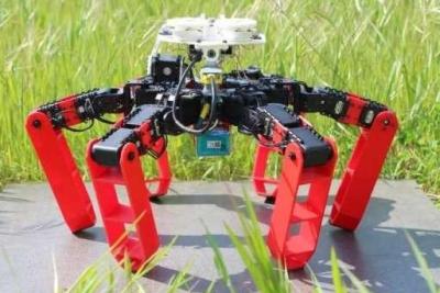 法国研发出靠光学运动传感器定位移动的蚂蚁机器人