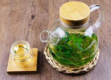 桑叶茶的制作方法与口感,桑叶茶的功效与作用