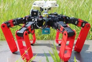 法国科学家开发出六足机器人AntBot,其能像蚂蚁一样导航