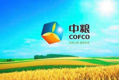 中粮集团计划投资俄罗斯小麦深加工厂并提供设备