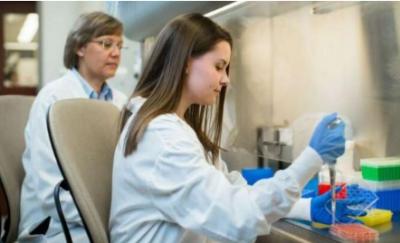 科学家开发出高效重编程干细胞的新型系统,有望快速应用于临床
