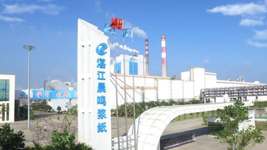 湛江晨鸣60万吨液体包装纸板项目通过环评