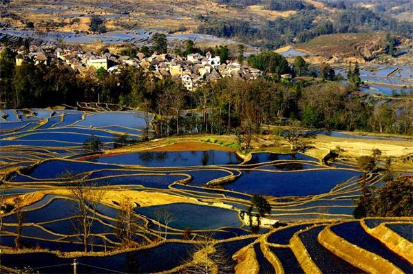中科院南京土壤所在淡水养殖系统温室气体排放研究中取得进展