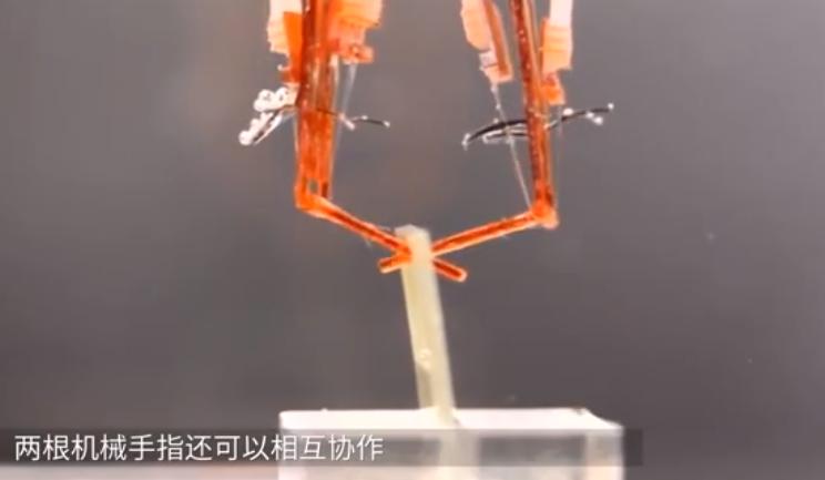 日本人用活体肌肉培育机械手,和真手没区别,残疾人敢用?