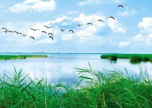 江苏省环境厅发布江苏省生态环境监测条例(草案征求意见稿)