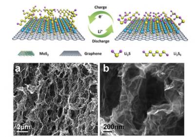 陈远富教授等研发出三维石墨烯异质结构,可作为多硫化物转化催化剂