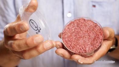 实验室养殖肉成功将带来饮食革新:没抗生素且更环保