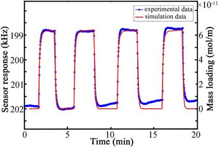 声学所声表面波气体传感器实时响应仿真模型 可直观分析传感器响应因素