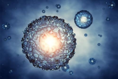 转录因子Bach1揭示人胚胎干细胞自我更新奥秘