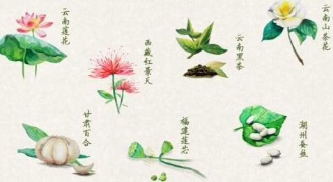 阿斯利康与绿叶制药合作升级,促进中医药国际化