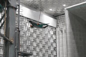"""中国最先进气动设计的""""灵雀B""""大边条翼身融合民航客机实施首次风洞自由飞试验"""