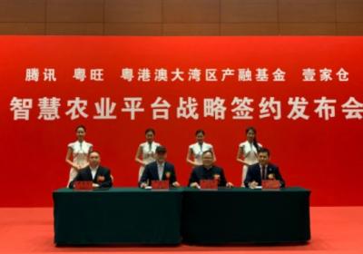 腾讯与广东粤旺等四方战略合作,打造智慧农业平台